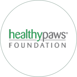 The Healthy Paws Foundation